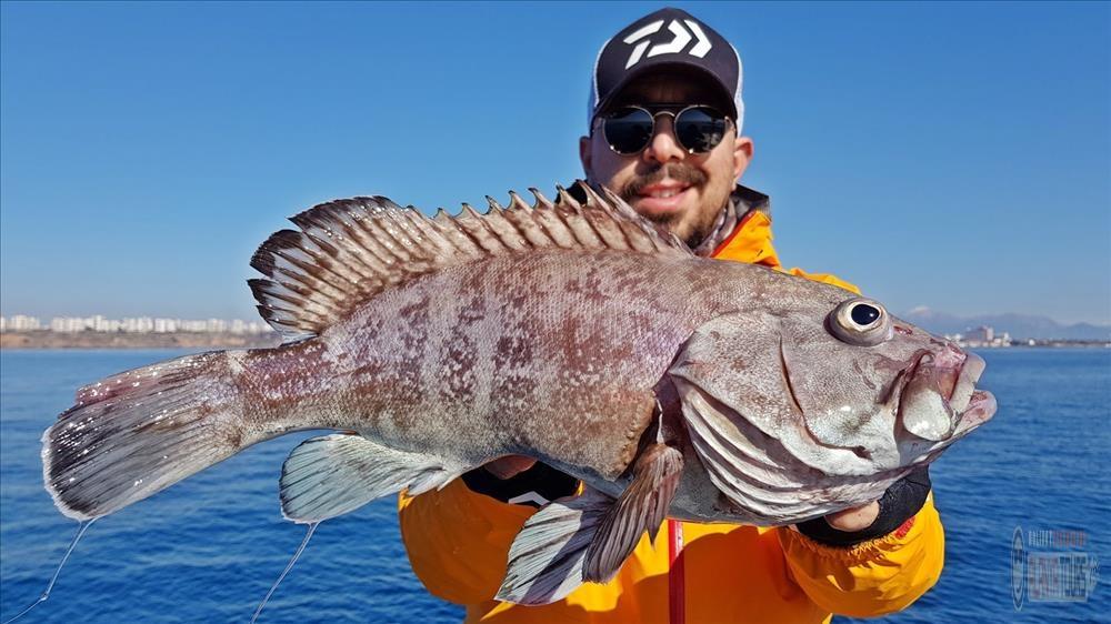 Рыбалка в Турции Алания цена 2020